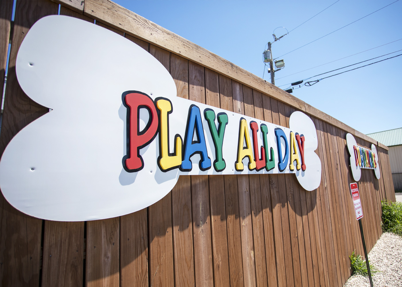 portsmouth nh play all day doggy daycare. Black Bedroom Furniture Sets. Home Design Ideas